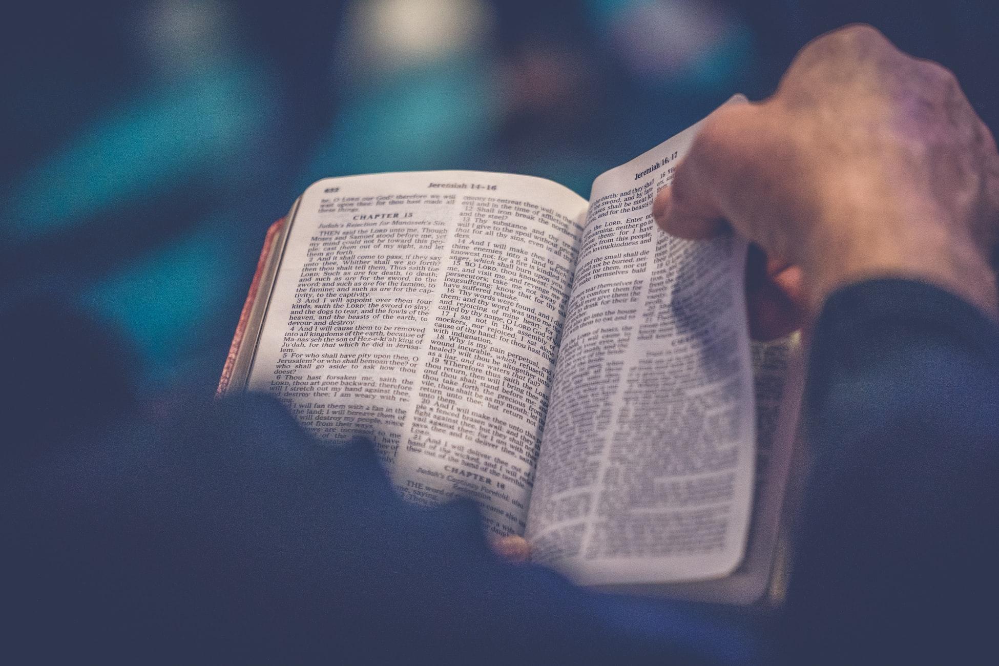 Read the Bible Like a Catholic