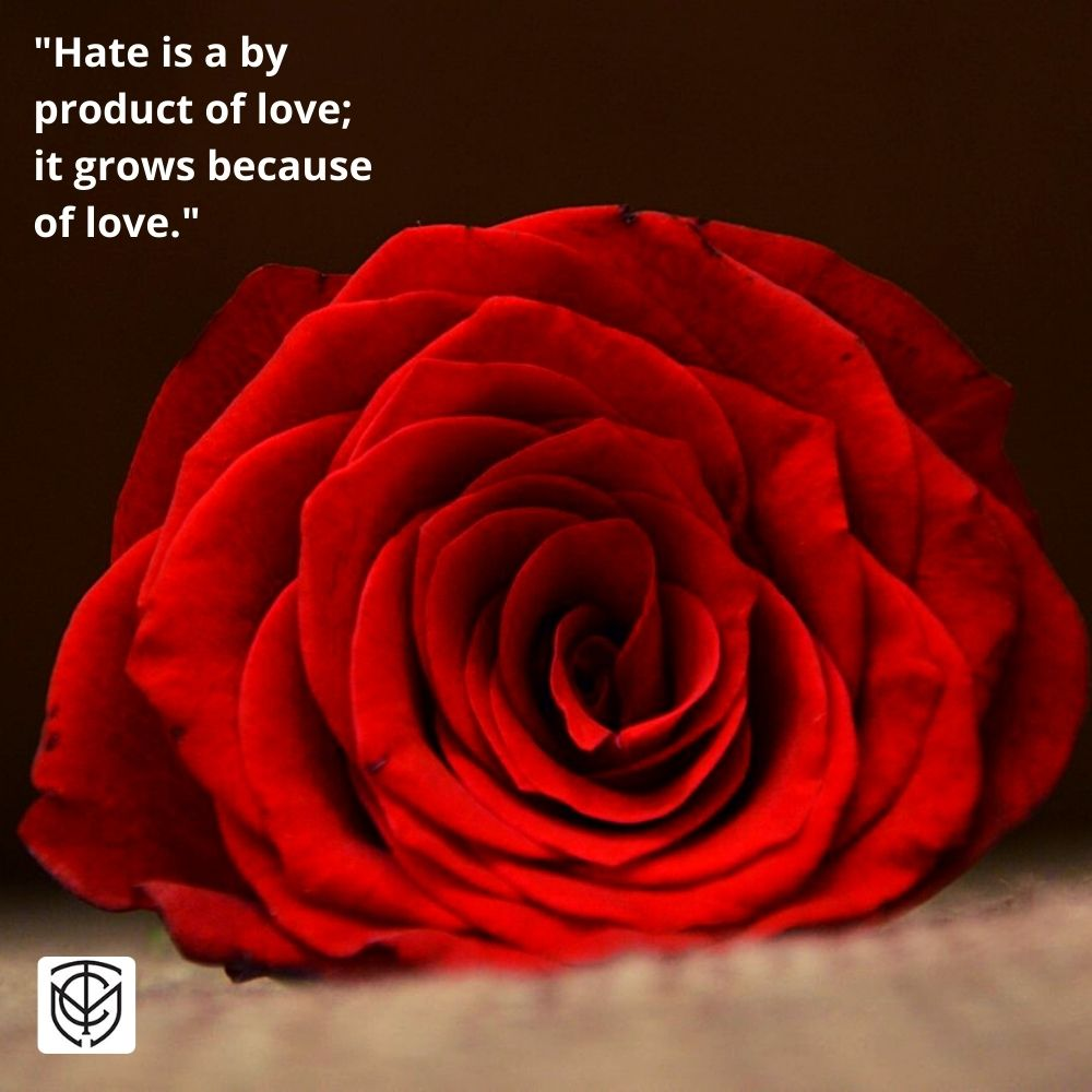 Hate is Not the Opposite of Love – Love Produces Hate